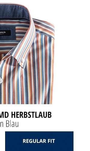Extraglatt-Hemd Herbstlaub - Streifen Blau, Regular Fit   Walbusch